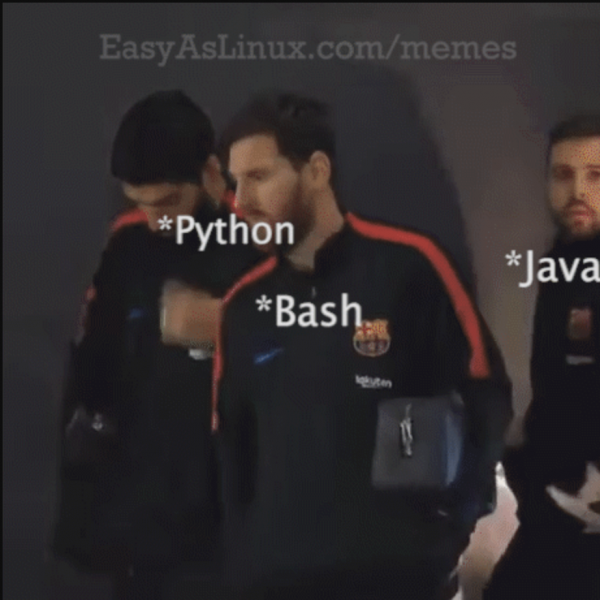 Getting something done in Linux with Python, Bash and Java be like this