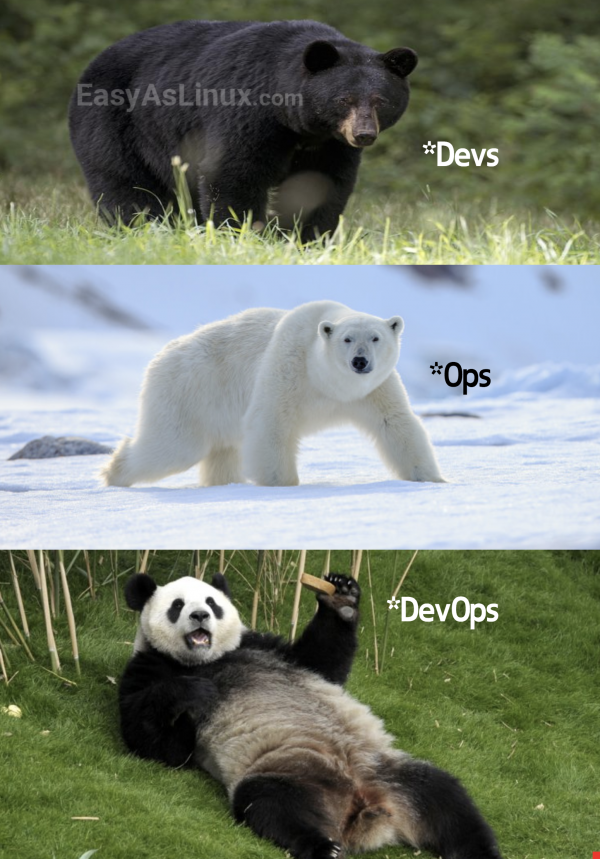If someone ask you what DevOps is, show him this pic!